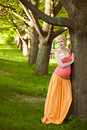 Young happy pregnant woman relaxing in nature and enjoying life Stock Photos