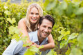 Young happy woman embracing young handsome man women men in the grape fields Stock Photos