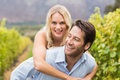Young happy woman embracing young handsome man women men in the grape fields Royalty Free Stock Photos