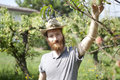 Young hipster bearded boy farmer who gathers peaches from the orchard with straw hat Royalty Free Stock Images