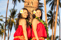 Young hula dancers two beautiful hawaiian posing against a palm tree at sunset Stock Photos