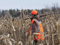 Young hunter a in a cornfield hunting in minnesota Royalty Free Stock Image