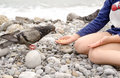 Young kid feeding dove bird using bare hand animal lover sits on the stones while Stock Image