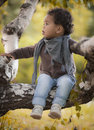 Young kid on tree in autumn park Stock Photo