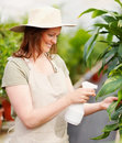 Young lady wearing a hat watering the plants Stock Image