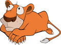 Young lion cartoon little with the big eyes Royalty Free Stock Photography