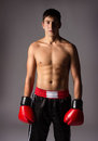 Young male kickboxer handsome caucasian wearing red boxing gloves and kickboxing gear isolated on a neutral background Stock Photography