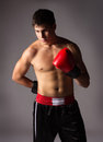 Young male kickboxer handsome caucasian wearing red boxing gloves and kickboxing gear isolated on a neutral background Royalty Free Stock Photo