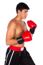 Young male kickboxer handsome caucasian wearing red boxing gloves and kickboxing gear isolated on a white background Royalty Free Stock Photos