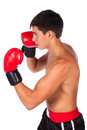 Young male kickboxer handsome caucasian wearing red boxing gloves and kickboxing gear isolated on a white background Stock Photos