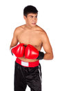 Young male kickboxer handsome caucasian wearing red boxing gloves and kickboxing gear isolated on a white background Stock Photography