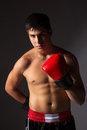 Young male kickboxer handsome caucasian wearing red boxing gloves and kickboxing gear on a neutral background Stock Image