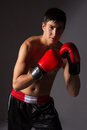 Young male kickboxer handsome caucasian wearing red boxing gloves and kickboxing gear on a neutral background Royalty Free Stock Images