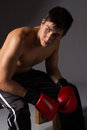 Young male kickboxer handsome caucasian wearing red boxing gloves and kickboxing gear on a neutral background Stock Photography