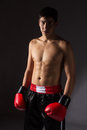 Young male kickboxer handsome caucasian wearing red boxing gloves and kickboxing gear on a neutral background Royalty Free Stock Photo