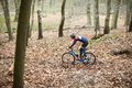Young man cross-country cycling through a forest Royalty Free Stock Photo