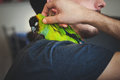 Young man cuddle his pet parrot on shoulder Royalty Free Stock Photo