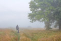 Young man in foggy morning on meadow in autumn looks at big tree Royalty Free Stock Photo