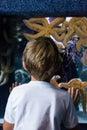 Young man looking at big starfish behind the camera the aquarium Royalty Free Stock Photo