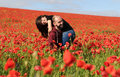 Young man and woman having date in the field of poppies Royalty Free Stock Photo
