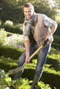 Young man working in garden Stock Photo