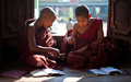 Young monks learning in monastery myanmar near inle lake Stock Images
