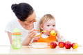 Young mother feeding her baby. Conception of healthy nutrition. Royalty Free Stock Photo