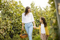 Young mother and her cute girl have fun in autumn vineyard Royalty Free Stock Photo