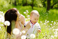 Young mother and her cute son blowing dandelion flowers together Royalty Free Stock Photo