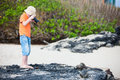 Young nature photographer little boy photographing marine iguanas on volcanic rocks Stock Image