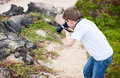 Young nature photographer little boy photographing marine iguanas on volcanic rocks Royalty Free Stock Images