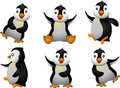 Young penguin set character Stock Photography