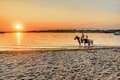 Young people riding horses in the sunset by the sea on the islan Royalty Free Stock Photo