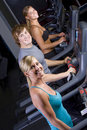 Young people on treadmills Royalty Free Stock Image