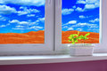 Young plants in the flower pot on the window-sill and view to the desert and cloudy sky Royalty Free Stock Photo