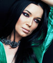 Young pretty brunette woman fashion dressed, bright makeup, eleg Royalty Free Stock Photo