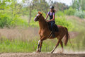 Young pretty girl riding a horse with backlit leaves behind in s Royalty Free Stock Photo