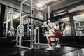 Young sexy brunette girl in the gym doing squat with barbell Royalty Free Stock Photo