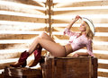 Young and sexy cowgirl posing in a barn happy western style image taken Stock Photography
