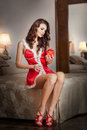 Young sexy santa holding a gift boudoir shoot attractive brunette with long hair wearing a provocative lingerie xmas style Royalty Free Stock Photos
