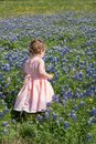 Young Girl in Field of Blue Bonnet Flowers Royalty Free Stock Photo