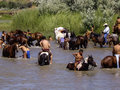 Young warriors cool off after the battle crow agency montana usa – june reenactment by cavalry soldiers and american indians of Royalty Free Stock Photography