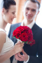 Young wedding couple portrait Royalty Free Stock Photos