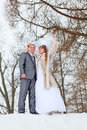 Young wedding couple walking on snowy park Stock Photos