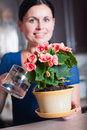 Young woman arranging flowers Royalty Free Stock Photo