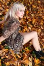 Young woman on the background of autumn leaves Royalty Free Stock Photography