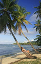 Young woman in bikini laying on leaning palm tree las galeras b beach samana peninsula dominican republic Royalty Free Stock Photography