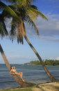 Young woman in bikini laying on leaning palm tree las galeras b beach samana peninsula dominican republic Stock Image