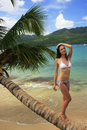 Young woman in bikini standing on leaning palm tree at rincon be beach samana peninsula dominican republic Stock Image