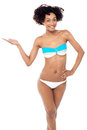 Young woman in bikini on a white background glamorous presenting copy space Stock Photos